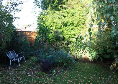 Barnet garden before work began