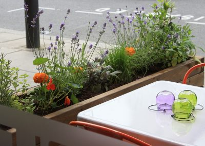 Edible planters through window