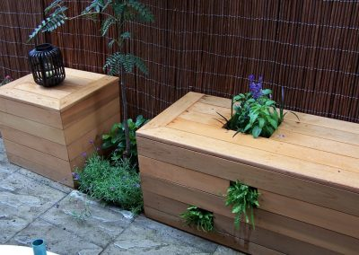 Box planter with fern