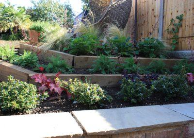 Planting design by Judi Samuels