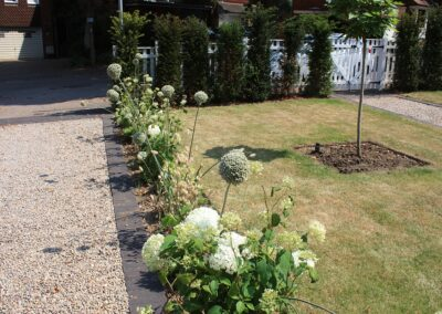 Flower border in August